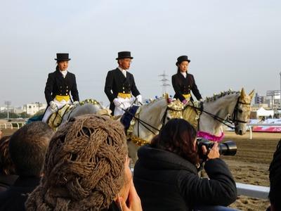 川崎記念誘導馬