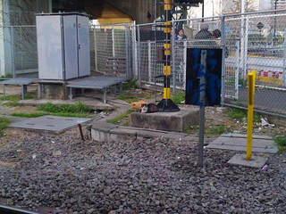 猫の集会場