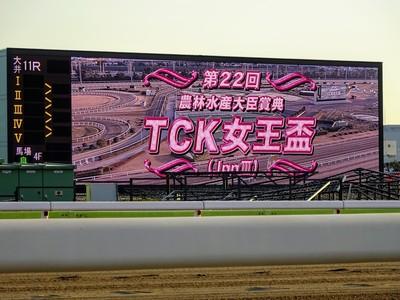TCK女王杯